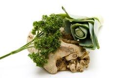 Celery and leek Royalty Free Stock Photos