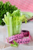 Celery measuring tape Stock Images