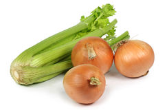 Celery,onion. On white background closeup stock photography