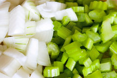 Celery and Onion Stock Photos