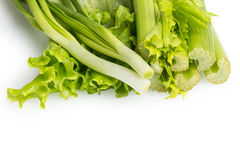 Celery, onion and lettuce Royalty Free Stock Images