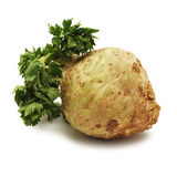 Celery root Royalty Free Stock Photo