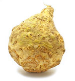 Celery root royalty free stock photos