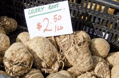Celery Root. Also called celeriac for sale in the outdoor farm market Royalty Free Stock Photos