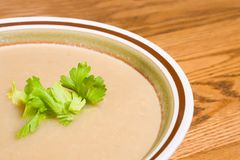 Celery Root Bisque. In a stoneware bowl with celery leaf garnish Royalty Free Stock Images
