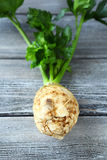 Celery root on the boards Stock Photography