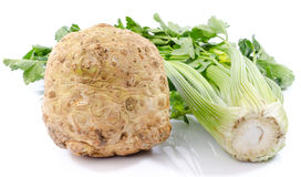 Celery root and green celery. On white Royalty Free Stock Photos