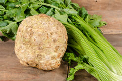 Celery root and green celery. On wooden background Stock Photos