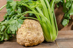 Celery root and green celery. On wooden background Royalty Free Stock Image