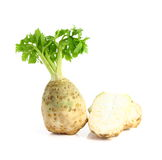 Celery root with leaf. Isolated on white background Royalty Free Stock Images