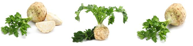 Celery root with leaf isolated on white background. Celery isolated on white. Healthy food stock image