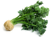 Celery root with leaves Royalty Free Stock Image