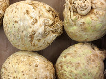 Celery root in market as background. Celery roots in market place as background Royalty Free Stock Photography