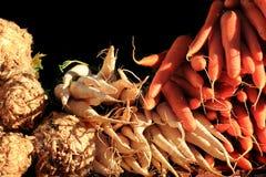 Celery root,parsley, carrot Stock Photos