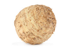 Celery root on white stock image