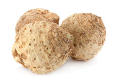 Celery root on white royalty free stock photo