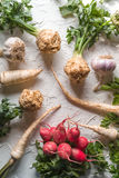 Celery roots, parsley, radishes with leaves and garlic on a white table. Vertical Royalty Free Stock Image