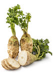 Celery roots. Two fresh organic celery roots with leaves and one slicedon a white background Royalty Free Stock Photography