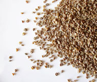 Celery seed. On white background Stock Photo