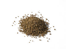 Celery Seed Pile Isolated. A close up on a pile of dried Celery Seed isolated on a white background Stock Photography