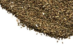 Celery Seeds. With a white area to add desired text Stock Photo