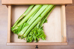 Free Celery Stalks In Open Drawer Royalty Free Stock Photography - 76055407