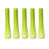 Celery Sticks Royalty Free Stock Photos