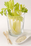 Celery sticks salad. Stock Image