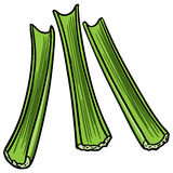 Celery Sticks. Vector illustration of a few Celery Sticks Royalty Free Stock Photo