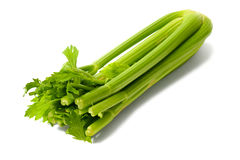 Celery on White Royalty Free Stock Image