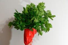 Celerybration - внимательно в оболочке пук сельдерея стоковые изображения