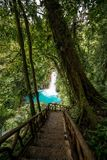 Celeste falls. Costa Rica Stock Photography