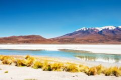 Celeste lagoon and volcano in Altiplano, Bolivia Royalty Free Stock Photos