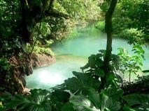 celeste rio Royaltyfri Bild