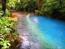 Celeste River bij het Nationale Park van Tenorio Royalty-vrije Stock Foto's