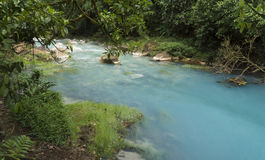 Celeste River. At Costa Rica Stock Images