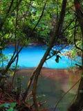 Celeste River på den Tenorio nationalparken royaltyfria bilder