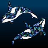 Celestial Orcas Vector Clipart Lizenzfreies Stockfoto