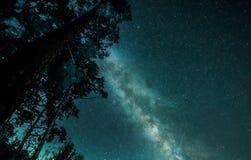 Celestial view of starry night sky with milky way Stock Photos