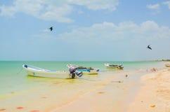 Celestun Beach, Yucatan, Mexico Stock Photos