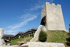 Celje medeltida slott i Slovenien Arkivbild