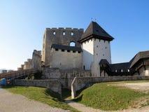 Celje slott i Slovenien Arkivfoto