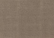 cell- abstrakt bakgrund Royaltyfri Bild