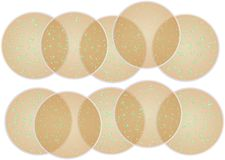 Cell culture dishes Stock Images