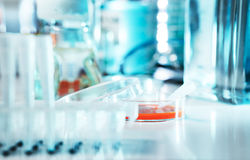 Cell culture sample. In sterile hood Stock Photos
