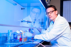 Cell culture work in modern laboratory. Young tech works with cell cultures under sterile hood Royalty Free Stock Photos