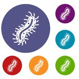 Cell of dangerous virus icons set Royalty Free Stock Photos