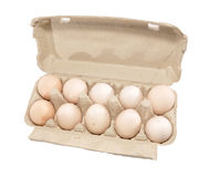 Cell with eggs. Eggs lay in a tray, a cell Stock Images