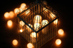Cell-lantern Stock Image
