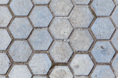 Cell pavement tile Stock Photo